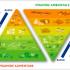 Educazione, Alimentazione e Sostenibilità